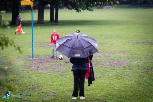 Regen bij RDZ op het Bisonveld